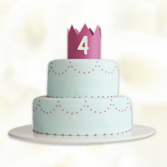 Two Tier Princess Cake