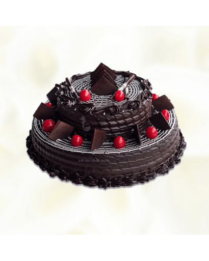 Two Layer Chocolate Cake